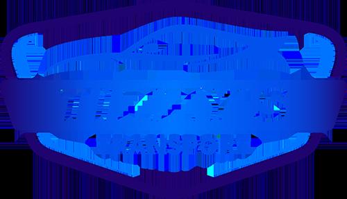 Tizzys Transport
